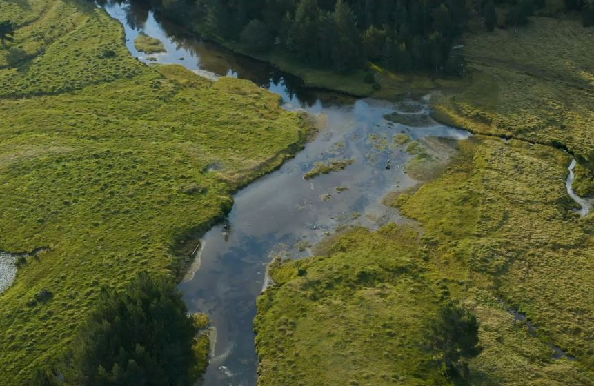 La SHEM soucieuse de la biodiversité
